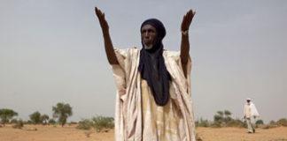 niger menace