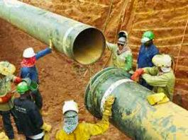 Oleoduc Niger Tchad Cameroun